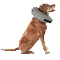 Well & Good Inflatable Collar for Dogs and Cats, Medium