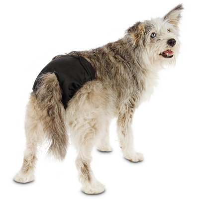 So Phresh Washable Diaper for Dogs, Large