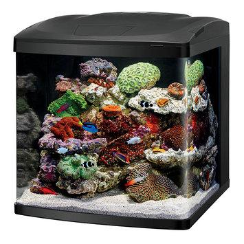 Coralife LED Biocube Aquarium LED, 32G