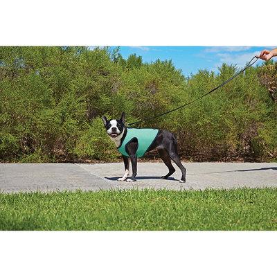 Good2Go Cooling Dog Vest, Medium
