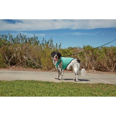 Good2Go Cooling Dog Vest, Large