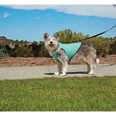 Good2Go Cooling Dog Vest, XLarge, X-Large