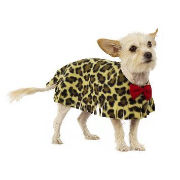 Pooch-o Cheetah Print Dog Poncho with Bow, Medium