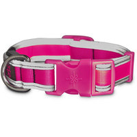 Good2Go LED Light-Up Collar for Dogs in Pink, Medium