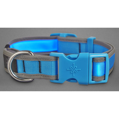 Good2Go LED Light-Up Collar for Dogs in Blue, Small