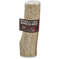 Good Lovin' Naturally Shed Colossal Elk Antler Dog Chew, 10 oz.