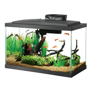 Aqueon Black Aquarium, 10 gal