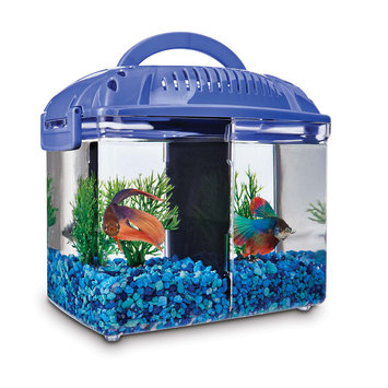 Imagitarium Betta Fish Dual Habitat Tank in Blue, 0.8 gal.