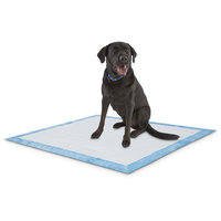Animaze X-Large Absorbent Dog Potty Pads, 40 CT