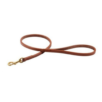 Alvalley Flat Snap Lead for Dogs 3/8 in x 2ft
