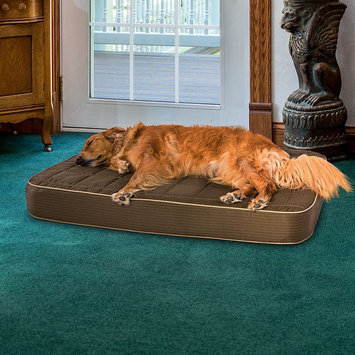 Paus Deluxe Quilted Orthopedic Pet Bed, Brown