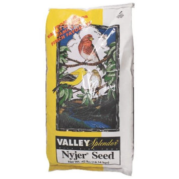 Nyjer Seed 179 By Red River Commodities