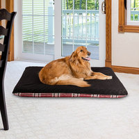 Paus Double Sided Orthopedic Pad Pet Bed, Red