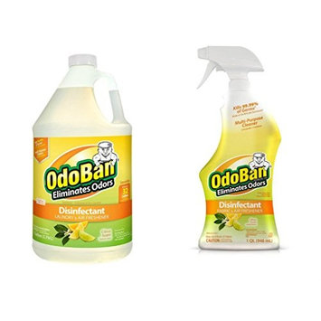 OdoBan Ready-to-Use 32oz Spray Bottle and 1 Gal Concentrate, Citrus Scent [Citrus]