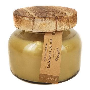 Hawkwood Mint Leaf & Eucalyptus 5.92-oz. Candle Jar, Multicolor