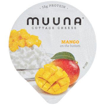 Muuna® 2% Milkfat Mango Cottage Cheese 5.3 oz. Cup