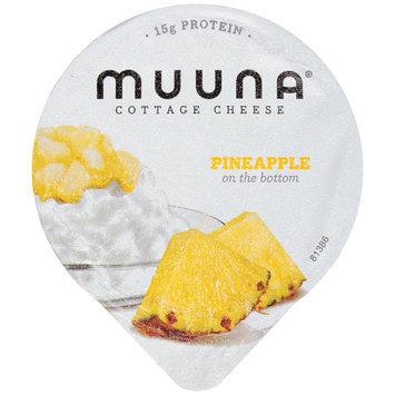 Muuna® 2% Milkfat Pineapple Cottage Cheese 5.3 oz. Cup