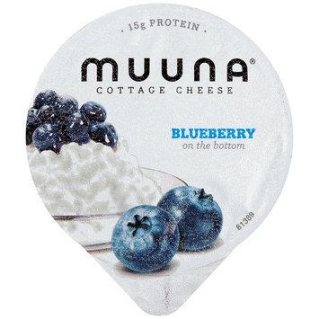 Muuna® 2% Milkfat Blueberry Cottage Cheese 5.3 oz. Cup