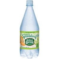 POLAND SPRING Brand Sparkling Natural Spring Water, Summer Melon 33.8-ounce plastic bottle