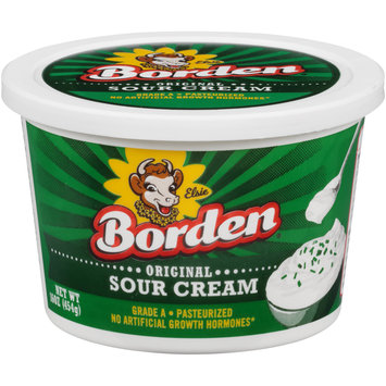 Borden® Original Sour Cream 16 oz. Tub