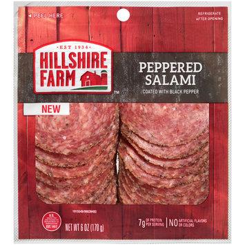Hillshire Farm™ Peppered Salami 6 oz. Peg