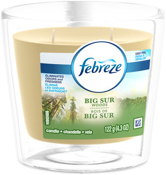 Candle Febreze Scented Candle Big Sur Woods Air Freshener (1 Count, )