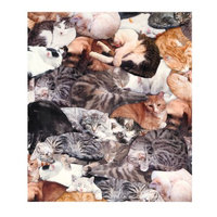 Whatonearth Cat Lovers Fleece Single Standard Size Pillowcase