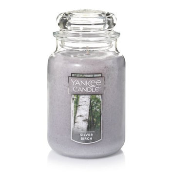 Newell Brands Yankee Candle Large Jar Candle, Silver Birch