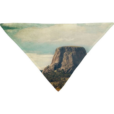 DENY Designs Catherine Mcdonald Pet Bandana Sky Blue - Devils Tower - DENY Designs Pet Bags