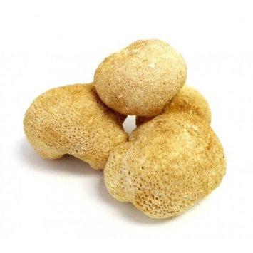 Dried Lion's Mane Mushrooms - 16 oz. (1 lb.) Life Gourmet Shop