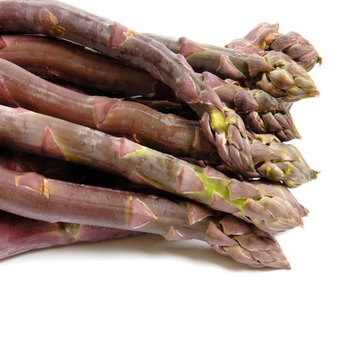 Hand Picked Nursery Purle Passion 10 Live asparagus bare root plants -2yr-crowns