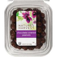 Nature's Harvest Chocolate Peanuts, 12 oz