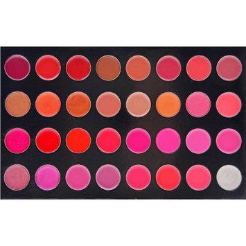 SHANY Masterpiece Lipstick/Lipgloss Palette, 5.3 oz