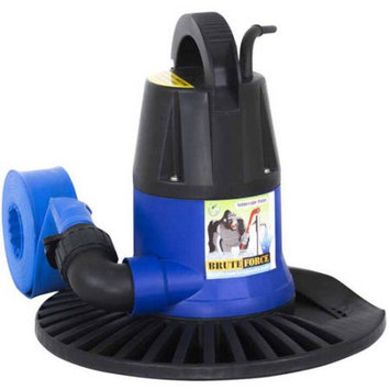 Blue Torrent 1250 Gallon Per Hour Cover Pump for Swimming Pools