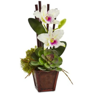 White Cattleya Orchid and Succulent Artificial Arrangement, Set of 2