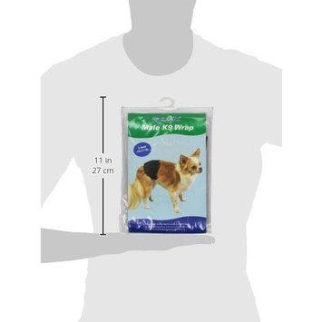Clean Go Pet Cotton/Polyester Male K-9 Pet Wrap, Black