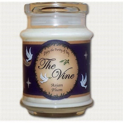 The Vine Candles 15300X 12 oz Asian Plum Jar Candle - isaiah 35-3-4 - 6 x 6 in.