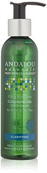 Andalou Naturals Kombucha Cleansing Gel