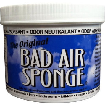 Bad Air Sponge 2-lbs container