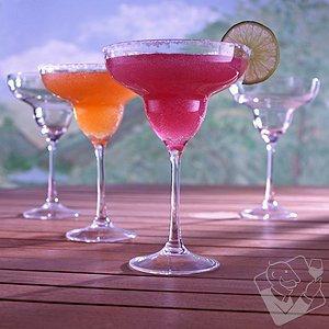 Indoor/outdoor Wine Glasses Indoor/Outdoor Margarita Glasses (Set of 4)