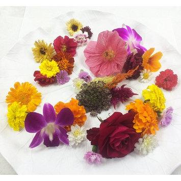 Edible Flowers Premium Flower Assortment 75-100 Count