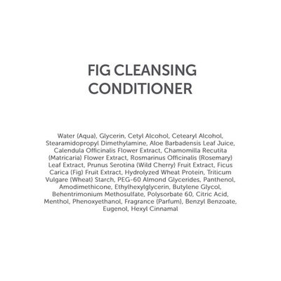 WenHairCare Fig - Cleanses, Strengthens and Nourishes Hair, No Harsh Sulfates (16 oz)