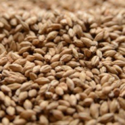 Malting Co. of Ireland Irish Stout Crushed Malt - 1 lb. Bag