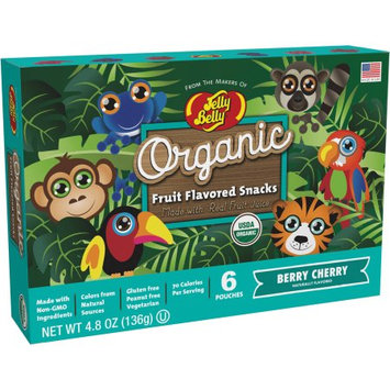Jelly Belly Candy Company JELLY BELLY ORGANIC FRUIT SNACKS RAINFOREST ANIMALS BERRY CHERRY POUCHES 4.8 oz. BOX
