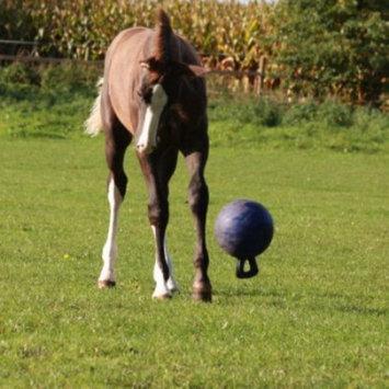 Horsemen's Pride Jolly Ball