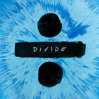 Divide (frpm) (180 Gram Vinyl) (dlcd) - Vinyl