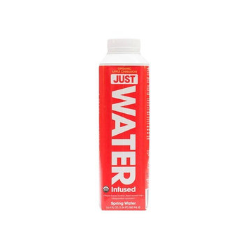 JUST Water Infused - Organic Apple Cinnamon, 100% Premium Spring Water Infused with Organic Essences in a Paper-Based Recyclable Bottle, No Sugar,... [Organic Apple Cinnamon]