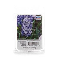 Mainstays Blue Hyacinth Wax Melts