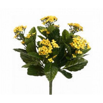 Allstate FBK107-YE-TT 13.5 in. Two Tone Yellow Kalanchoe Bushes X5- Case of 6