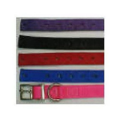 3/8 By 12 Inch Dog Collar Assorted 339125 by Westminster Pet Products